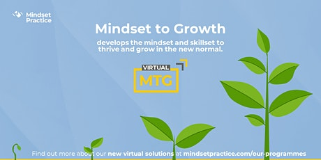 Supporting organisations and people  to enable a Mindset of Growth tickets