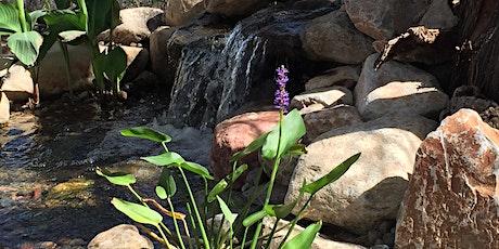International Water & Garden Showcase 2020 tickets