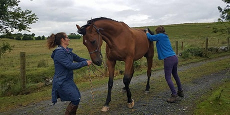Equine Back Clinic with Susan Elliott & Catherine Dolan tickets