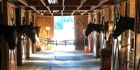 Sunshine Horses Barn/Tack Sale tickets