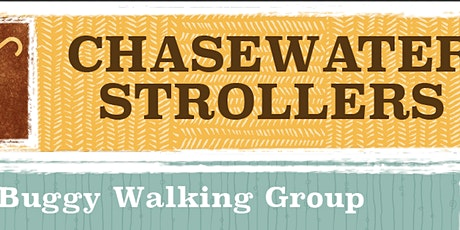 Chasewater Strollers Buggy Walking Group tickets
