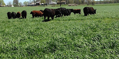WKY Summer Forage Field Day 2020 - GENERAL ADMISSION AND SPONSORSHIP tickets