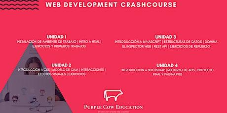 Web Development Crashcourse entradas