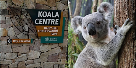 Daisy Hill Koala Centre - Admission Tickets tickets