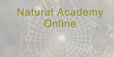 Introduction to Ecopyschology and Nature Based Practice tickets