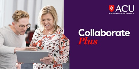 Launch Plus Incubator Program – Developing and testing your business idea tickets