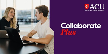 Launch Plus Incubator Program – Digital marketing tickets