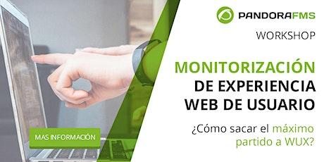 Monitorización de experiencia web de usuario. boletos