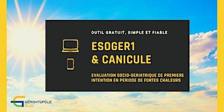 Webinaire : ESOGER1 & Canicule billets