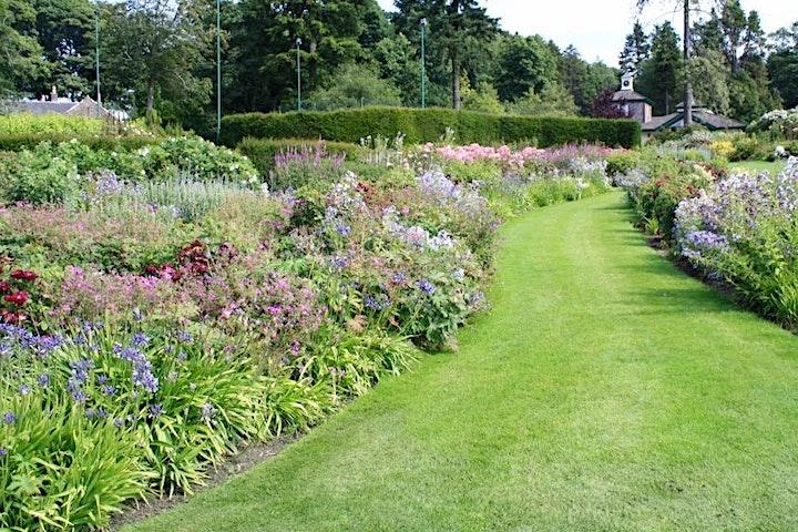 Teasses Garden Wednesday Openings image