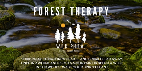 Forest Therapy in Wissahickon Valley Park tickets