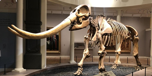 Double Take: One Mastodon, Two Viewpoints