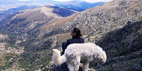Ferragosto nel  Gennargentu trekking e meditazione biglietti