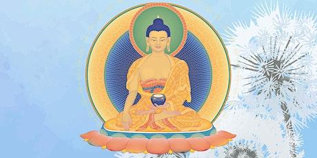 Monday Evening Meditation Class with Q&A - via Live-stream tickets