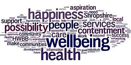 Rhwydwaith Lles / Wellbeing Network