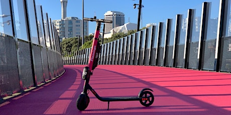 The Flamingo Scooter Story: Hardware Meetup AKL tickets