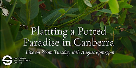 Planting a Potted Paradise in Canberra tickets