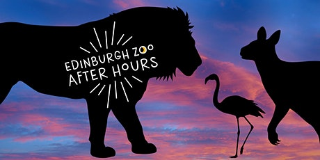 Edinburgh Zoo After Hours - Over 18's Only tickets