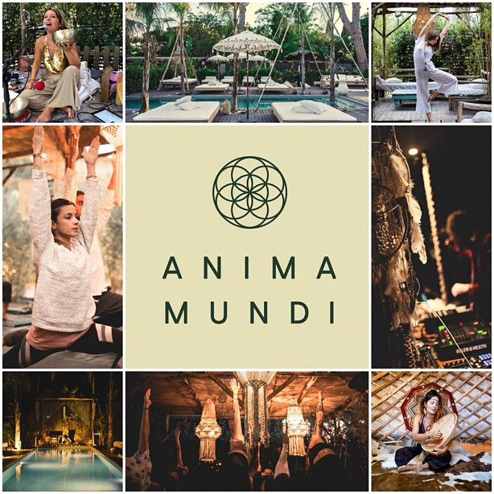 Immagine Anima Mundi ☉ Holistic Village