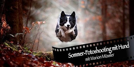 Sommer-Fotoshooting mit Hund Tickets
