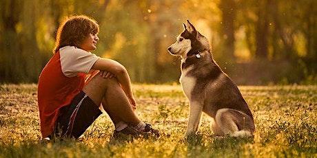WEBINAR: Masterclass Taal van de hond - basis tickets