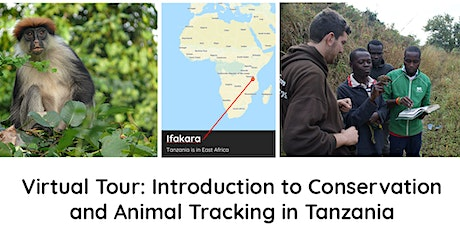 Virtual Tour: Introduction to Conservation and Animal Tracking in Tanzania tickets