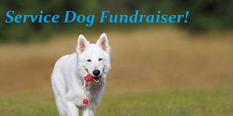 Service Dog Driveway Silent Auction Fundraiser tickets