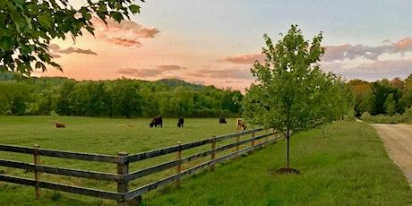 June Farms Pasture Massages! tickets