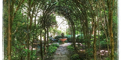 Forest Bathing at the Hidden Forest Nursery tickets