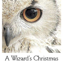 A Wizards Christmas Extravaganza Menu 2020 A Wizards Christmas Events | Eventbrite