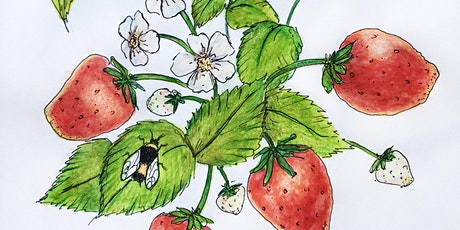 Sketch Night: Learn to Draw Strawberries tickets