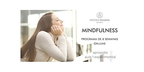 Aula experimental/Palestra de Mindfulness - Curso de 8 semanas ingressos