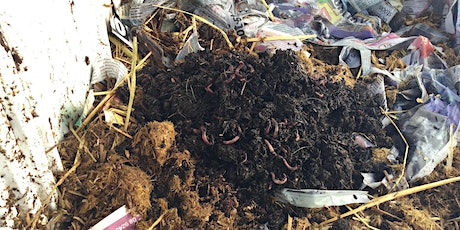 Kids...make your own worm farm! tickets