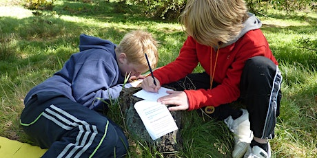 Curriculum-led Outdoor Learning and Play for Second Level (Aberdeen) tickets