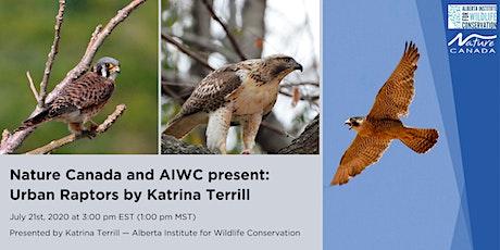 Nature Canada and AIWC present: Urban Raptors by Katrina Terrill tickets