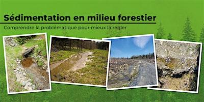 Formation sur la problématique de la sédimentation en milieu forestier