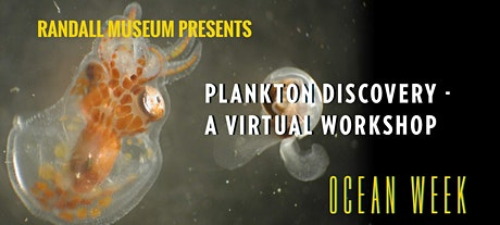 Plankton Discovery - A Virtual Workshop tickets