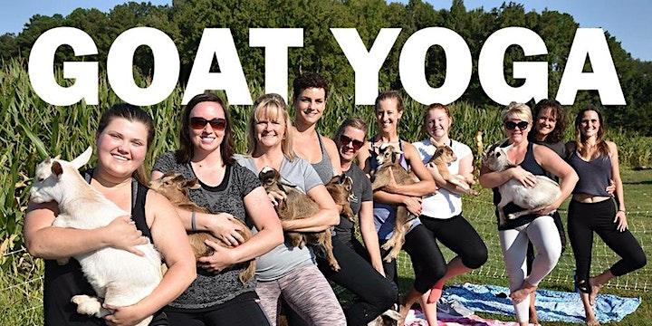 Goat Yoga Saturday May 22 nd10 am image