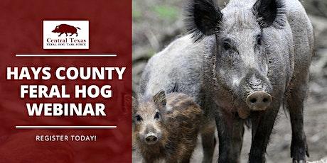 Hays County Feral Hog Webinar tickets