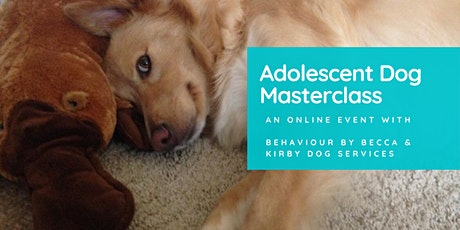 Adolescent Dog Masterclass tickets