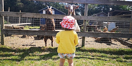 Tostock Animal Parks tickets