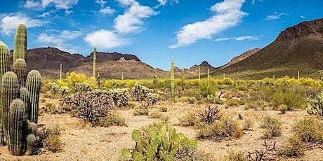 Desert (Hot Weather) Medicine tickets