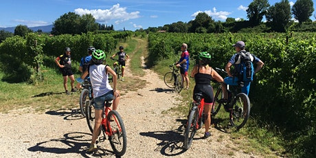 Bike Tour and wine tasting in Lazise tickets