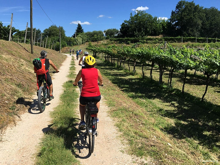 Bike Tour and wine tasting in Lazise image