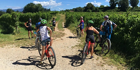Tour in bici  a Lazise con degustazione in cantina biglietti