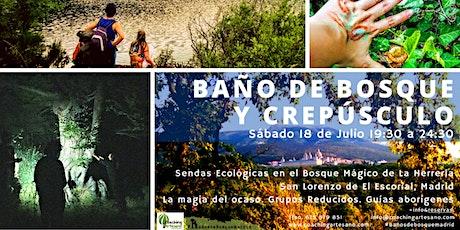 Baño de Bosque sábado 18 Jul  Crepúsculo Bosque La Herrería El Escorial entradas
