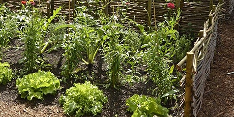 Gardening 101 - Starting From Scratch tickets