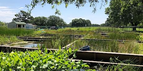 Wetland  Restoration Team @ EG tickets