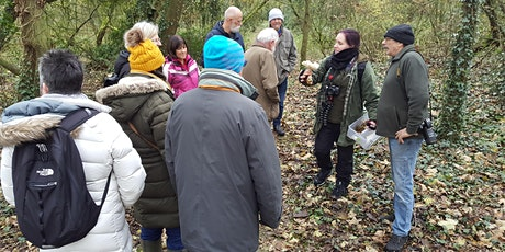 Fungi Walk with Debbie Nelson at Toome tickets