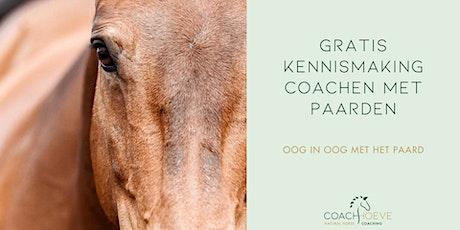 Gratis kennismaking coaching met paarden tickets